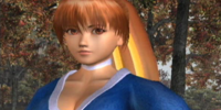 List of Dead or Alive 3 characters