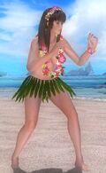 Hitomi Costume Aloha Bikini