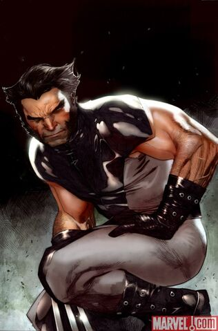 File:Wolverine WeaponX 01 CoipelCover.jpg