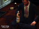 Dead rising the drunkard bottles (4)