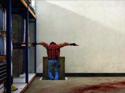 Dead rising the hatchet man pp photo