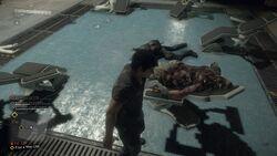 Diego's Corpse
