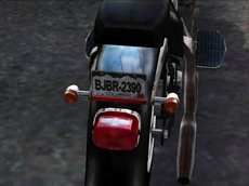 Dead rising license plate (3)