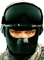 Dead rising soldier mask