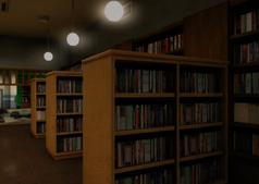 Contemporary Reading Bookshelves