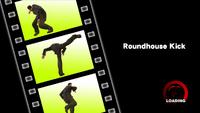 Dead rising skills roundhouse kick
