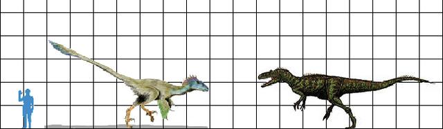 File:Megaraptor Utahraptor scale.png