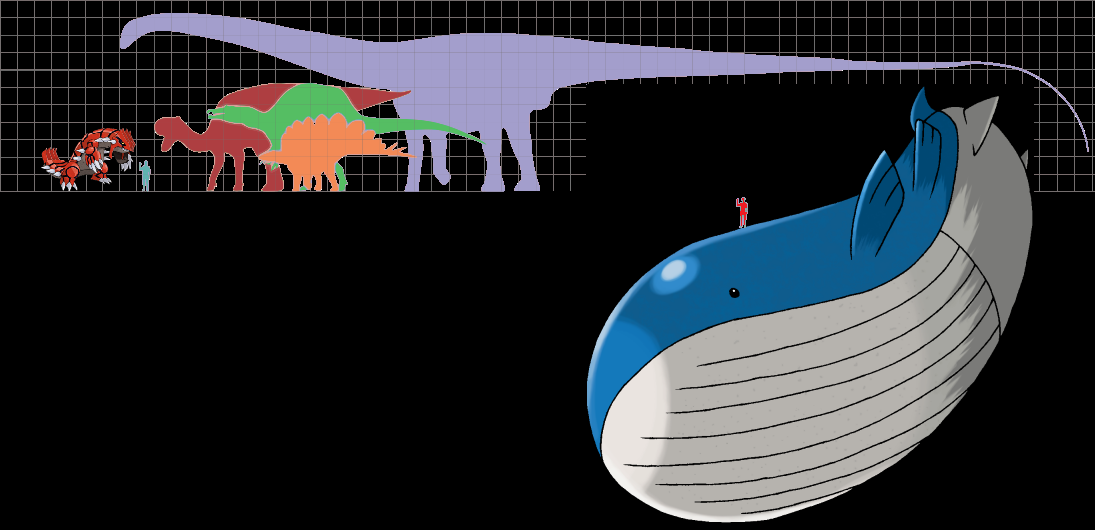 Image - Wailord scale.png | Prehistoric Wiki | FANDOM ... Wailord And Diglett