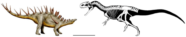 File:Kentrosaurus vs Monolophosaurus.png