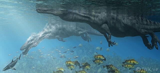 File:Aquatic Spino.jpg