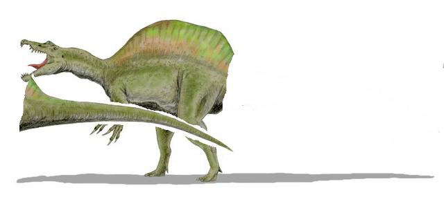 File:Spinosaurus B.png
