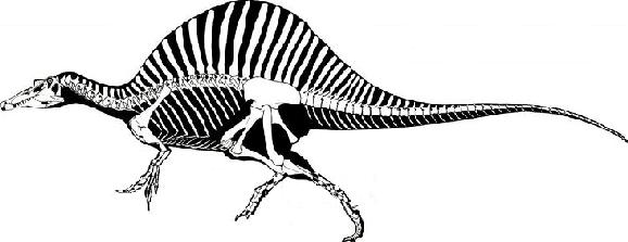 File:Panzarin Spinosaurus.png