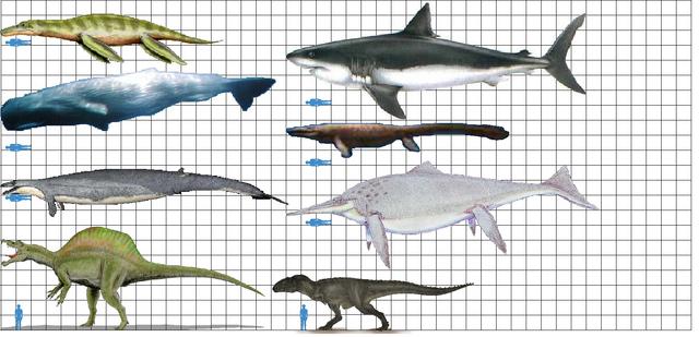 File:Largest predators 2.png
