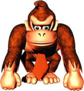 DK (Donkey Kong Country)