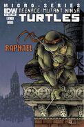 IDW-TMNT-Raphael Cover-A