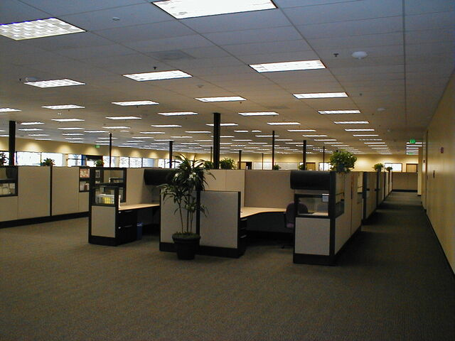 File:Used-cubicles.jpg