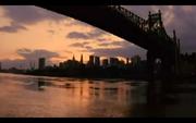 New York City Death Wish Brooklyn Bridge