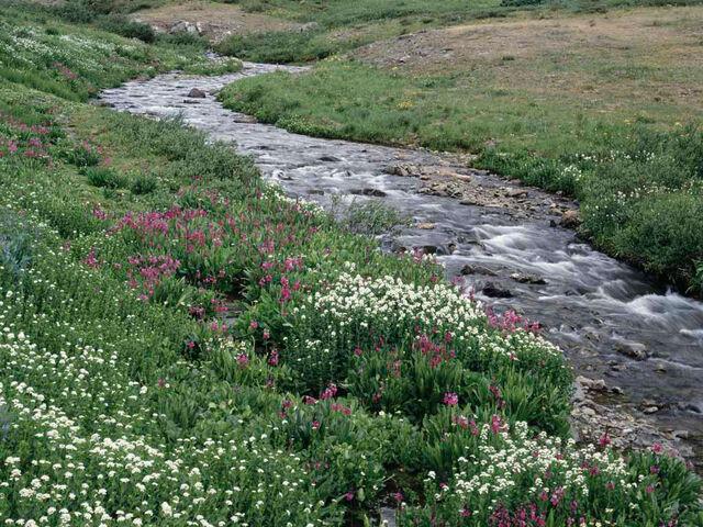 File:Creek.jpg