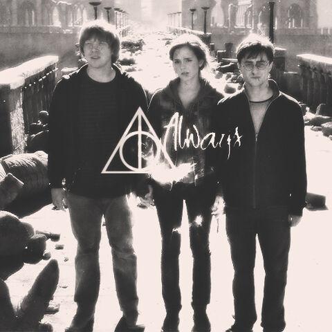 File:The golden trio.jpg