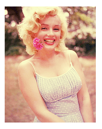 File:Marilynmpicprofile.png