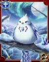 Snow Pigeon