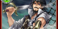 Freelance Pirate Rock