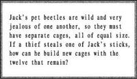 Beetle instructions