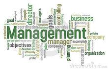 Management 2