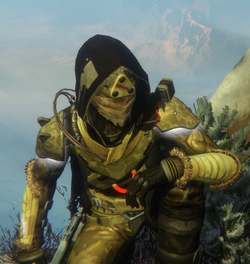 Destiny Time Hunter Profile