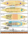 Decks USS Gri-Maax (CV-RORO-1).png