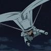Hang Glider Cape