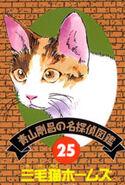 Detective 25