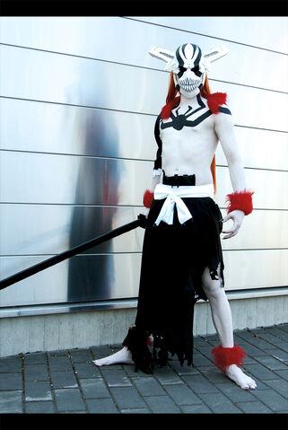 Datei:Fullo Hollow Ichigo - Bleach.jpg