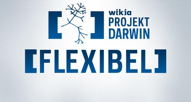 Datei:Slider Darwin Flexibel.jpg