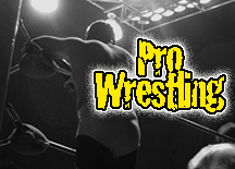 Datei:Pro Wrestling Logo.png