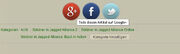 Social Icons groß und bunt