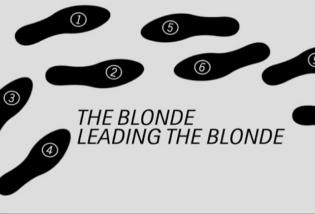 File:The Blonde Leading the Blonde.png