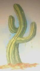 Raindropcactus