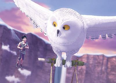 Snowy Owls Disney Fairies Wiki Fandom Powered By Wikia