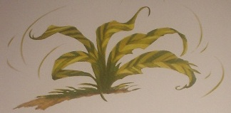 File:Tiger grass.JPG