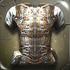 Sentinel Iron Coat Male