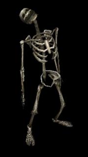Risen bones