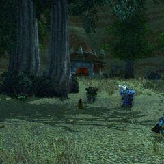 Der Clan der Schwarzkiefer wird auf dem Hof von Vrang Wildblut rasten.