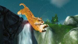 Gepard Jaspin.jpg