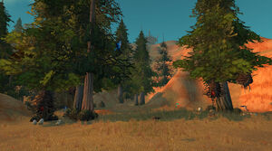Trockene Hügel.jpg