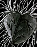 File:Th The Chaos Heart by TheChaosHeart.jpg