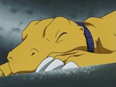 List of Digimon Adventure 02 episodes 10