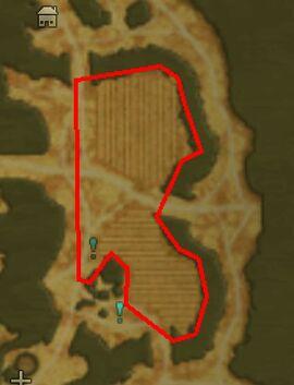 Green skeleshirt - pumpkin quest guide