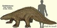 ScelidosaurusModel