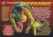 Brachiosaurus front